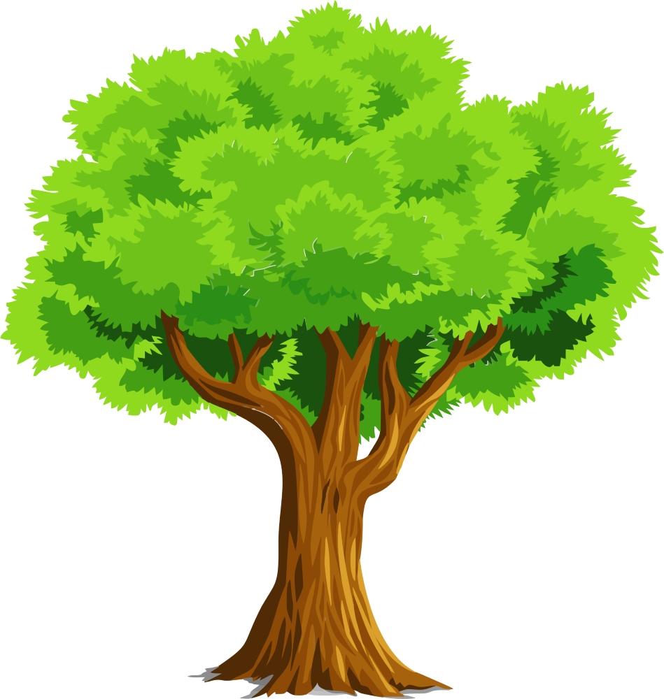 Let's Be an Arborist
